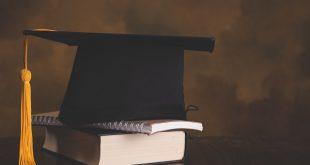 Higher education development & assessment